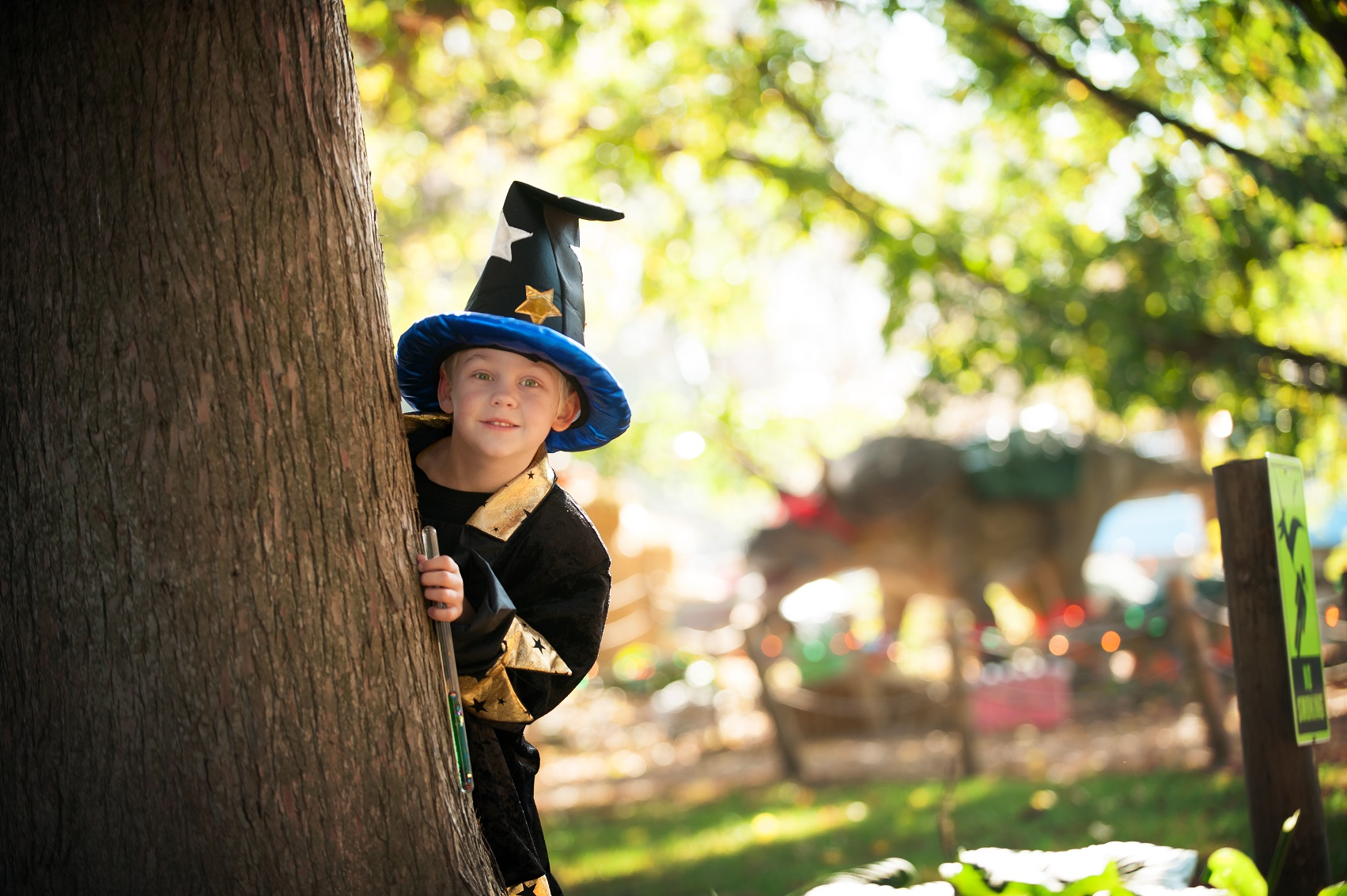 Boy in wizard costume peeking behind tree