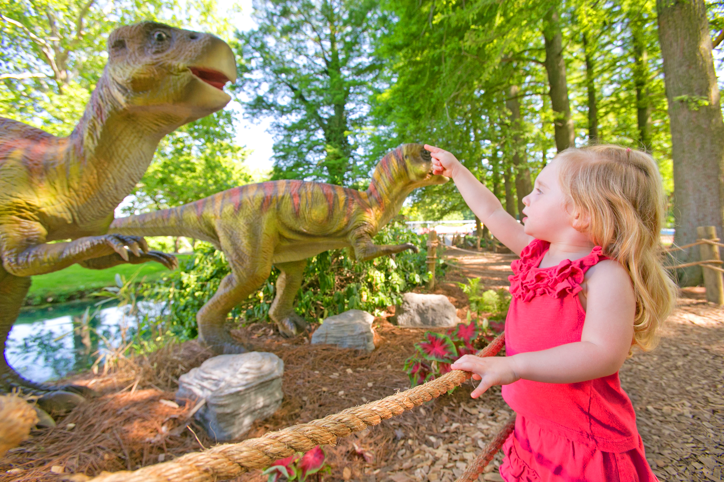 Girl pointing at Dinosaur