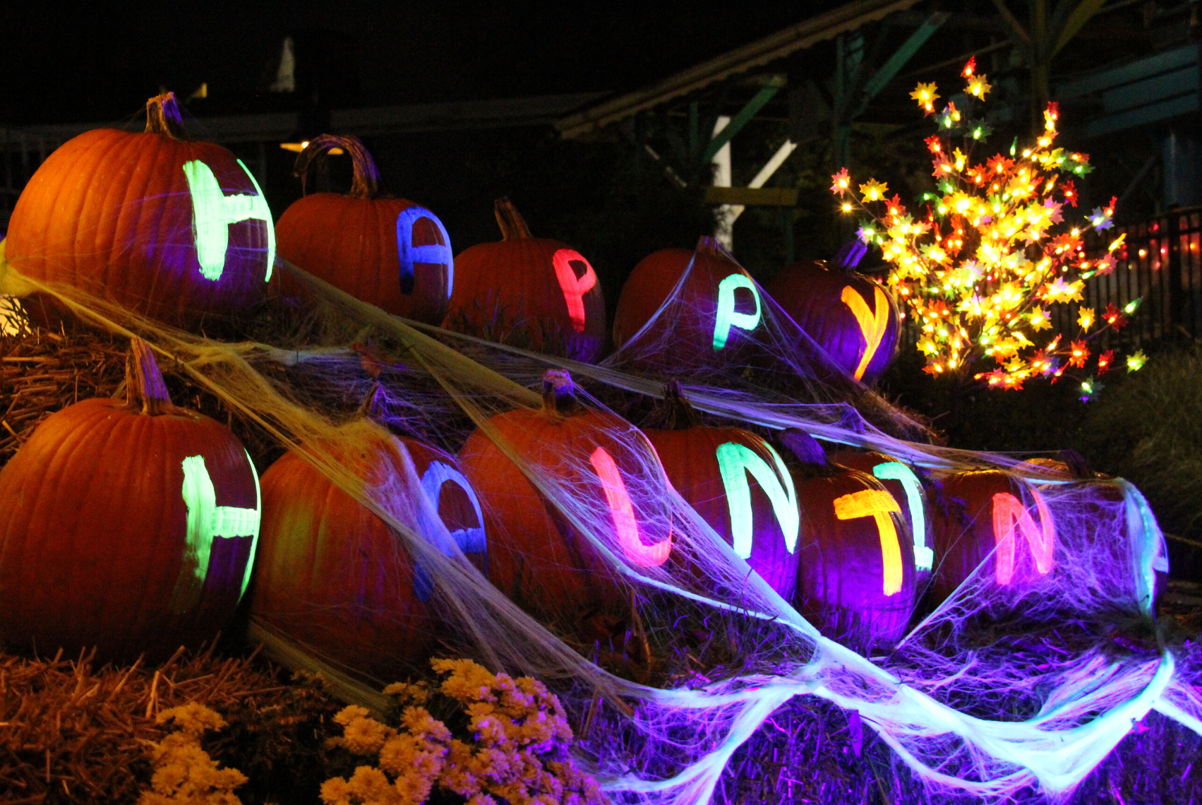 Pumpkins covered in spider webs with glowing letters spelling out Happy Hauntings