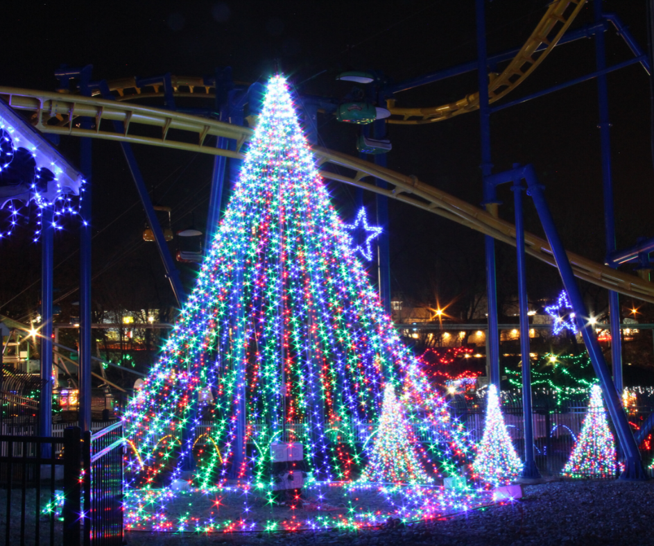 Light up trees in front of Merlin's Mayhem roller coaster