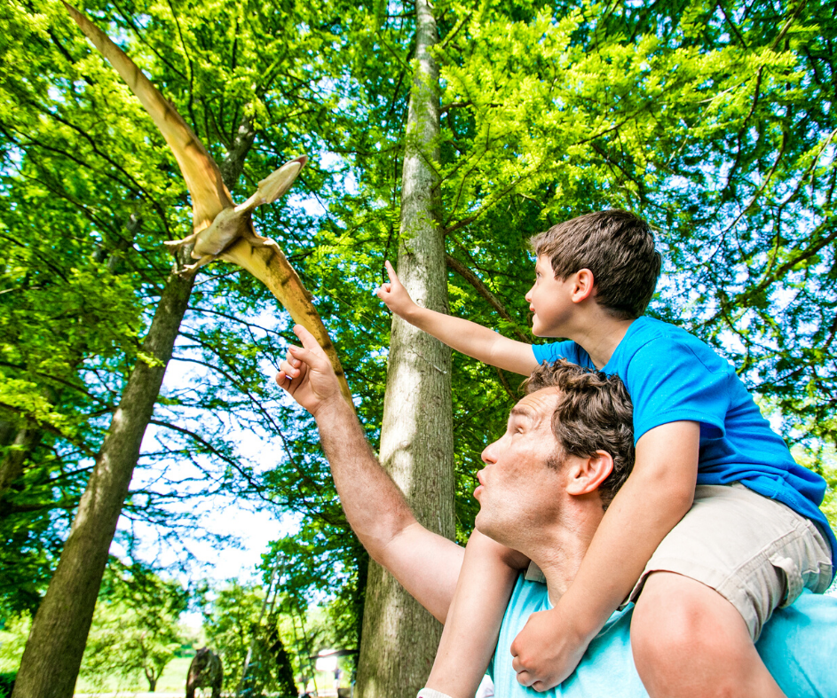 Man and boy pointing in excitement at flying dinosaur