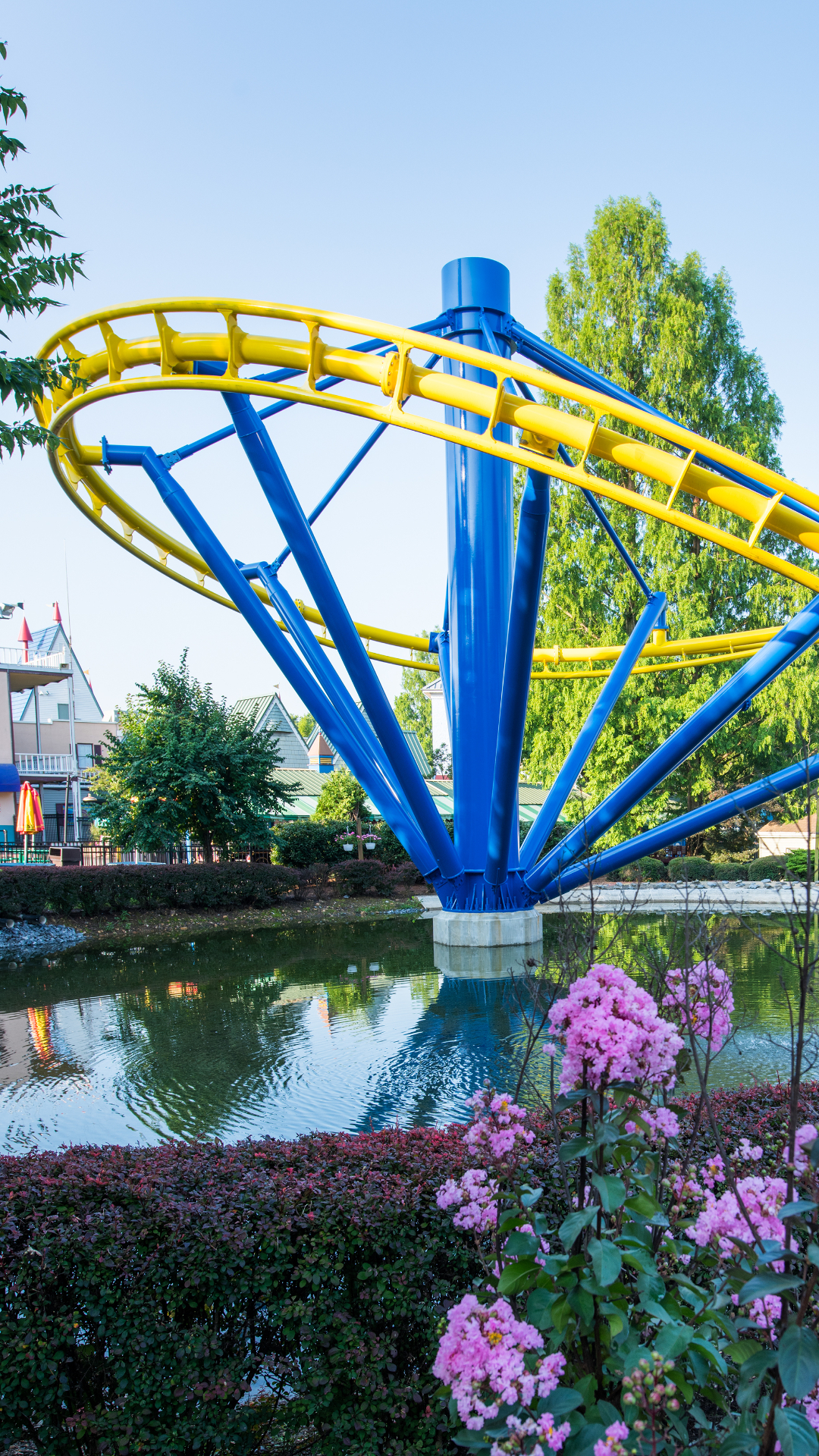 Yellow roller coaster helix above a pond and pink flowers