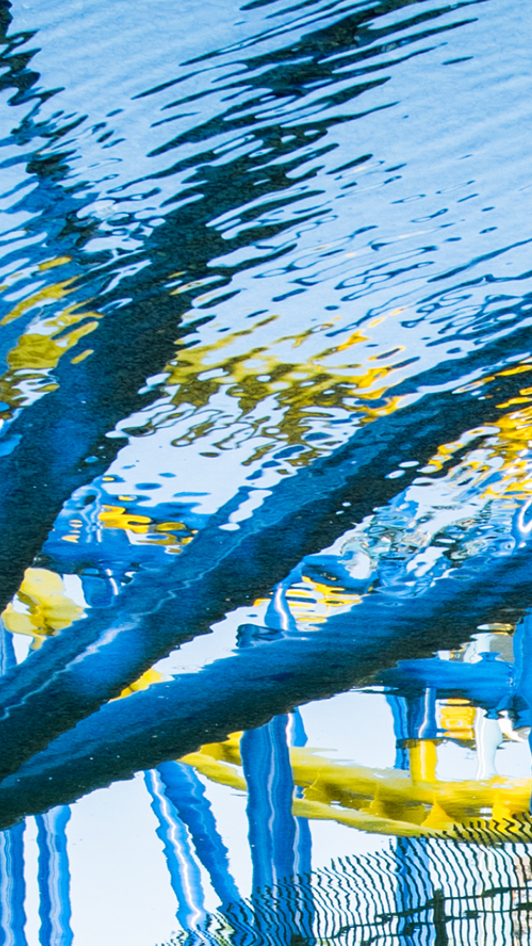 Reflection of a blue and yellow roller coaster in the ripples of a pond